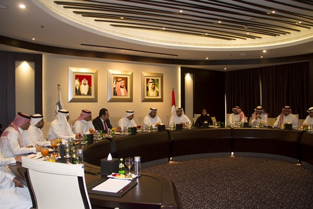Saudi delegation during meeting with DSC representatives